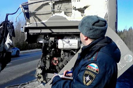 Автокатастрофа в Ленинградской области могла произойти из-за гололеда