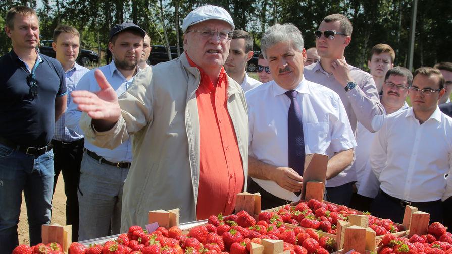 Жириновский раздал в государственной думе выигранный уГрудинина центнер клубники