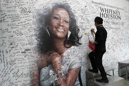 Уитни Хьюстон утонула в ванной в результате сердечного приступа, одной из причин которого стало употребление кокаина, официально заявили следователи