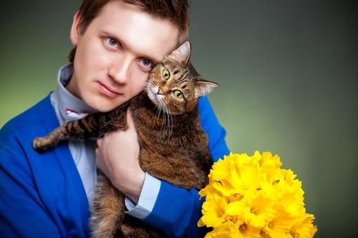 Аллергию на кошку вызывают бактерии