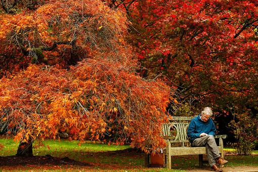 Шеффилд Парк в Южном Сассексе