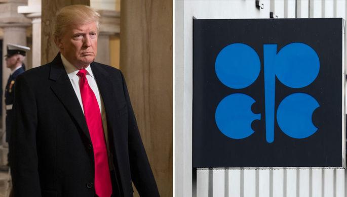 Дональд Трамп призвал ОПЕК снизить цены набензин