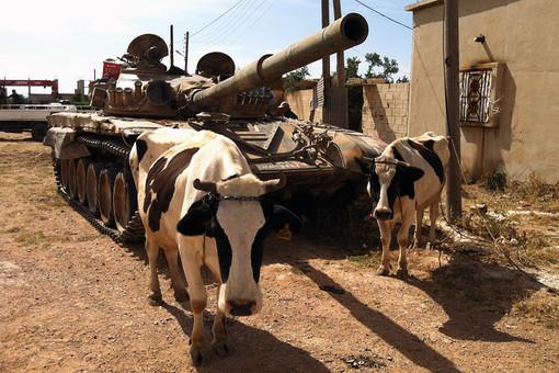 Правительственные войска берут под свой контроль бастионы сирийской оппозиции