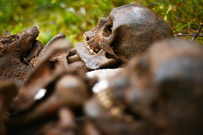 Впещере наФилиппинах отыскали  останки нового вида людей