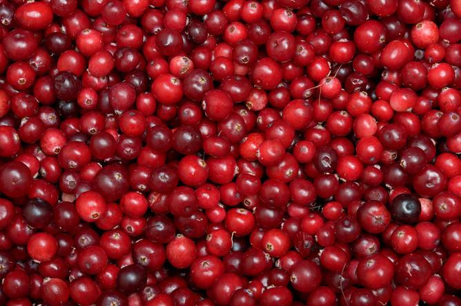 Необходимо снизить НДС наплоды, ягоды ивиноград— Минсельхоз