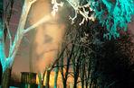 В Музее современного искусства на Гоголевском открывается «Паша 183» — выставка граффити и инсталляций уличного художника Павла Пухова
