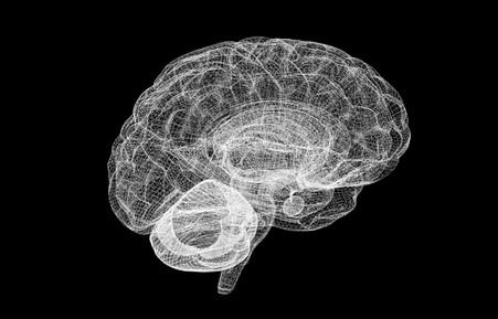 �������������� ������ ������ ������������� ���������� ������� ������ Human Brain Project