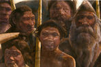 Genetics read most ancient human DNA age 400 thousand years
