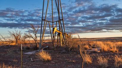 Разведанные запасы нефти в России составляют 14 млрд тонн — их хватит на 28 лет
