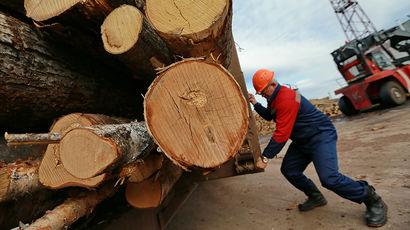 Лесопромышленный комплекс РФ в прошлом году показал рост прибыли почти в три раза