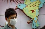 Первое подробное исследование вируса гриппа H7N9 опубликовано в Science