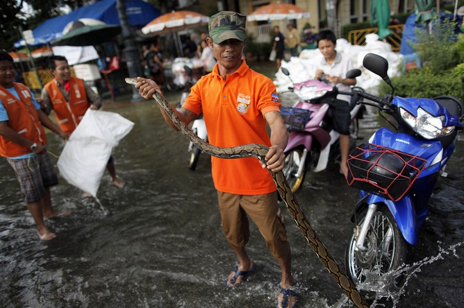 Отвзрыва намоторной лодке вТаиланде пострадали поменьшей мере 16 человек