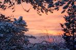 Прогноз погоды на выходные и следующую неделю с 17 по 23 февраля