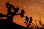 В ночь на 13 августа можно наблюдать главный «звездный дождь» года — Персеиды