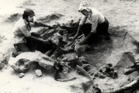 Раскопки в селе Молодово, 1978 год.