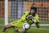 Вратарь сборной Чехии несмотря на повышенную влажность и скользкий мяч, сохранил свои ворота на...