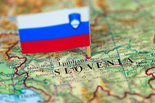 Если Словения не предпримет срочных мер, то станет следующей после Кипра страной, которую ждет банковский кризис