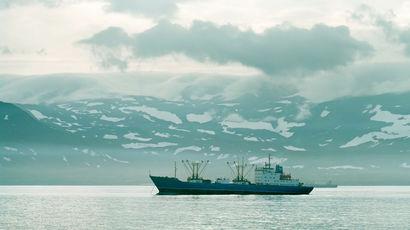 СК проверяет информацию о пропаже двух иностранных судов в Охотском море