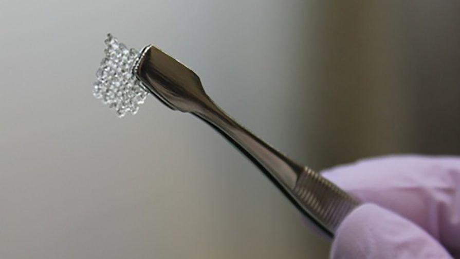 Мыши снапечатанными на3D-принтере яичниками дали здоровое потомство