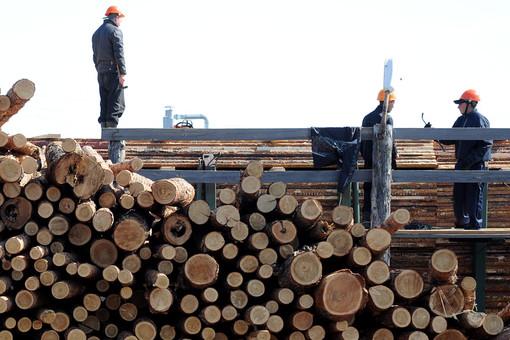 Ситуация в обрабатывающих производствах продолжает ухудшаться