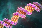 Генетики почистили неандертальца