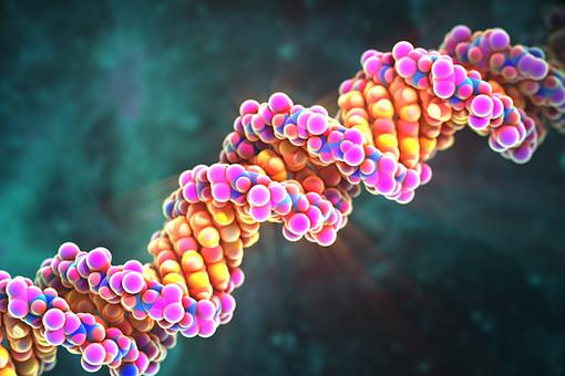 Ученые смогли очистить ДНК древнего человека от загрязнений