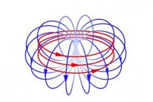Носителями темной материи могут быть частицы-анаполи