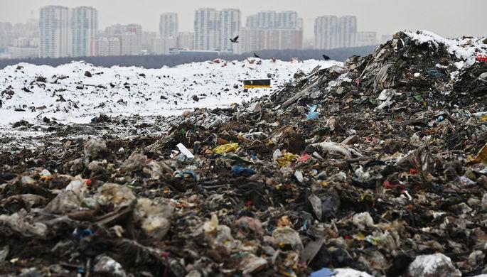 Непередаваемое амбрэ: Запах мусорной свалки вБалашихе решили сдобрить духами