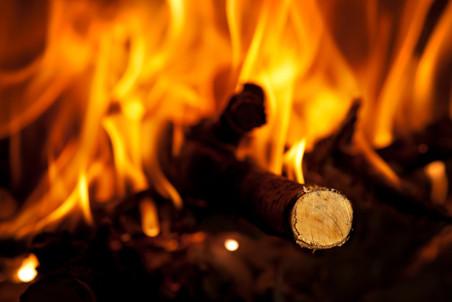 Люди использовали огонь уже миллион лет назад