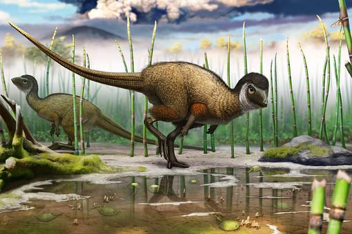 Реконструированное изображение динозавра Kulindadromeus zabaikalicus в естественных условиях