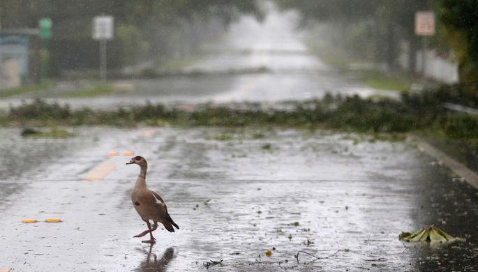 Трамп объявил режимЧП сразу в 2-х штатах из-за приближающегося урагана