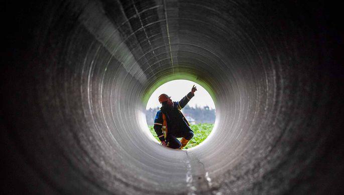Германские экологи подали иск против возведения «Северного потока-2»