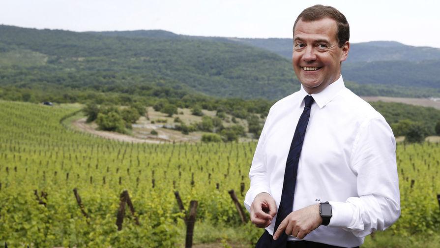 Дмитрий Медведев нашелся (премьера невидели две недели)