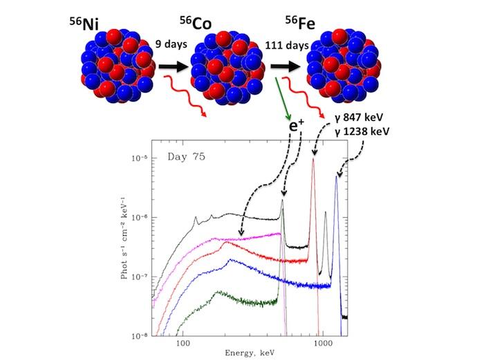 <sub>Цепочка распадов в сверхновой Ia: никель преваращается в кобальт, а кобальт — в железо // ИКИ РАН</sub>