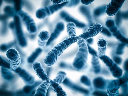 Состояние здоровья для данного конкретного возраста можно будет определить по длине хромосом