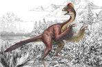 Новый вид птицеподобных динозавров был обнаружен палеонтологами в США
