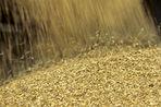 Китай требует у Украины $3 млрд за непоставленное зерно