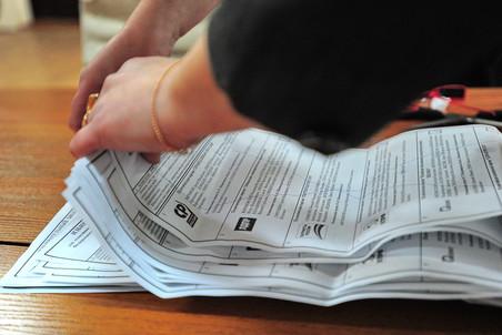 Статистика исследовала выборы TASS_2142636-pic4-452x302-23960