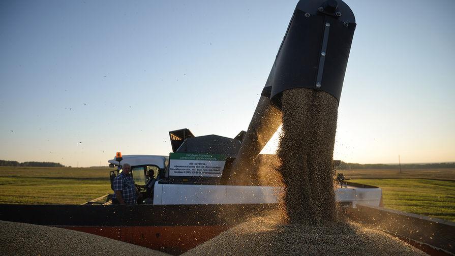 WSJ: рекордные объемы экспорта пшеницы из России угрожают благосостоянию фермеров США