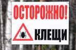 Сибирские ученые разработали первый в России экспресс-тест на клещевой энцефалит и болезнь Лайма. Об...