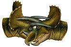 Трицератопсы использовали свои рога в боях друг с другом