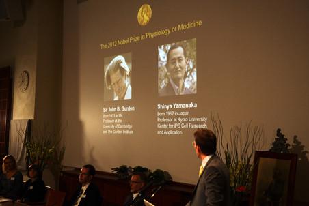 Первые нобелевские лауреаты— Джон Гёрдон и Синья Яманака.