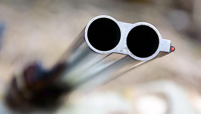 ГДРФ обсуждает продление разрешения нахранение оружия до15 лет