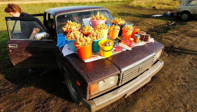 Осторожно, грибы: вТюменской области два случая отравления грибами