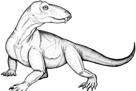 Древнейший ящер диноцефал жил не только в Сибири, но и в Бразилии