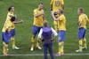 Пока врачи помогали Гаэлю Клиши, шведские футболисты получали указания от наставника Эрика...