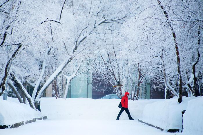 Из-за аномальных холодов в российской столице объявили «оранжевый» уровень опасности