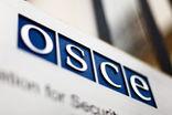 Из повестки заседания Парламентской ассамблеи ОБСЕ исчезла резолюция «О правах человека в России»