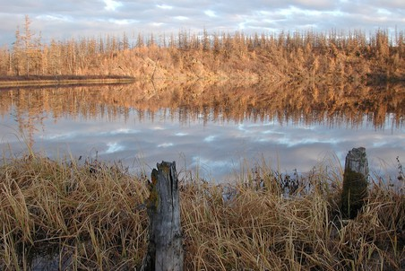 Термокарстовое озеро в Сибири