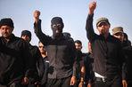 Между иракскими боевиками и талибами может быть заключен союз